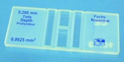 Slika za komorica za brojanje po fuchs-rosenthal-u ce