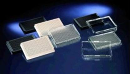 Slika za 384 white w/o lid cell culture, si